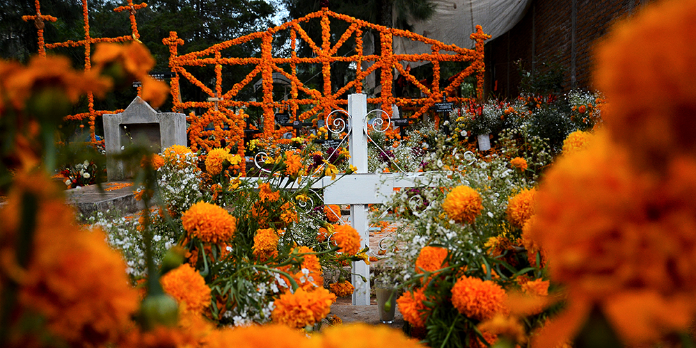 A cemetery in Mexico covered in orange marigold flowers